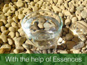 Help of Essences